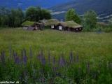 Na nórskom vidieku II...