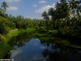 Zelená južná India...