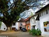 V uličkách starého portugalského koloniálneho mesta Kočín...