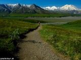 Pred nami Mt. Denali...