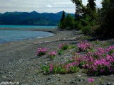 Kluane Lake Yukon...