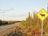 Aljašské cesty...