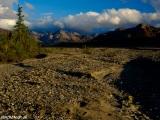 Na treku v NP Denali...