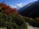 Annapurna III...
