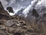 Annapurna_BC_01 (11)
