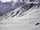 Annapurna_BC_01 (26)