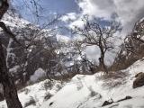 Annapurna_BC_01 (30)