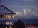 Na treku, v pozadí Dhaulagiri...