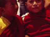 Malí mnísi...