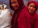 Budhistické mníšky na ceste do kláštora v Muktinate...