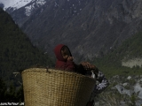 Annapurna-461