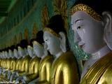 Budha budha budha...