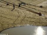 Barmský roľníci obrábajúci pôdu...