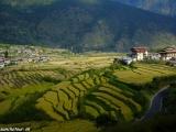 Bhután...