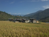 Way to Chimmi lhakhang