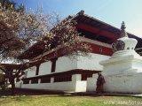 bhutan0072b