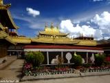 China Tibet-676