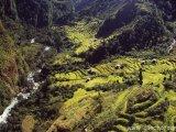 Zelené štavnaté údolie...
