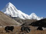 Everest-001-57