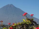 02_Antigua