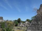 54_Tikal