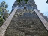 56_Tikal