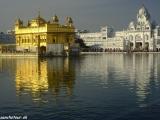 V Zlatom chráme v Amritsare je uložená posvätná kniha sikhského náboženstva Grant Abu Sahib...