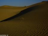 Večer na púšti Thár...