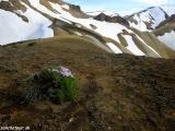 Na treku v Dúhových horách...