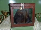 Sklap Yetiho v kláštore v Kumjungu...