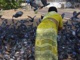 Kerala / Kochin – Jain temple si určite nenecháme ujsť...