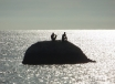 Palolom - ,,náš,, ostrov ku ktorému nie je problém doplávať...