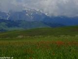 Kazachstan_Kirgistan-1021