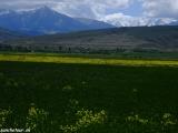 Kazachstan_Kirgistan-1232