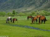 Kazachstan_Kirgistan-929