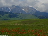 Kazachstan_Kirgistan-1037