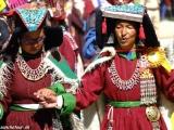 Ladakh-1158