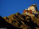 Ladakh-1241