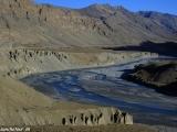 Ladakh-190