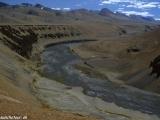 Ladakh-217