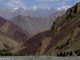 Ladakh-531