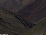 Ladakh-1015
