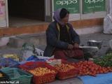 Ladakh-198