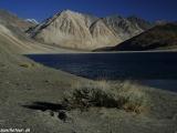 Ladakh-472