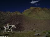 Ladakh-536