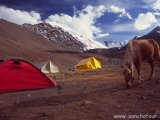 Base camp pod Stok Kangri...