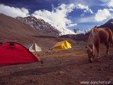 Base camp pod Stok Kangri...