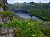 Norsko Lofoty-309
