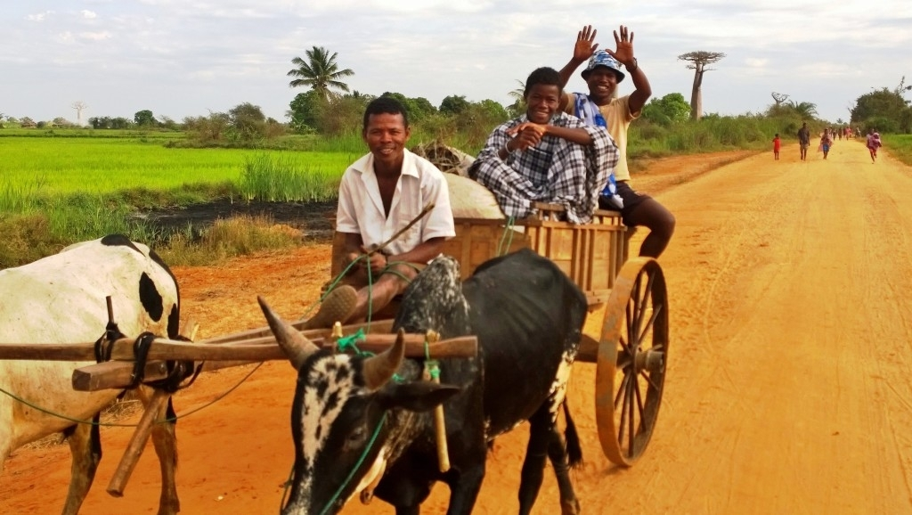 cestovanie po aleji Baobabov