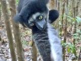 Madagaskar_01-7